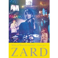 ZARD | ZARD What a beautiful memory 〜forever you〜