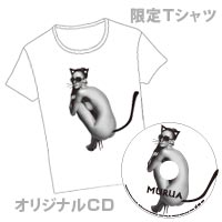 Brand Collectionシリーズ   MURUA GIFT【数量限定販売】