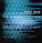 WANDS | AWAKE