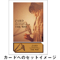 ZARD | ZARD 30th Anniversary Photo & Poetry Collection 〜THE WAY〜【Musing限定版】