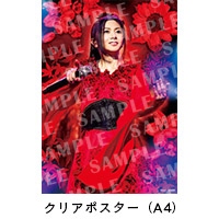 "倉木麻衣 | Mai Kuraki Live Project 2018 ""Red it be 〜君想ふ 春夏秋冬〜""【DVD】"