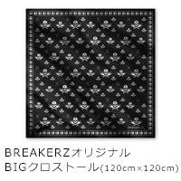 BREAKERZ   10周年スペシャルアルバム「X」【10th Anniversary Special Deluxe Edition】