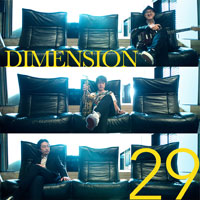 DIMENSION   29