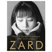 ZARD | ZARD 25thパンフレット