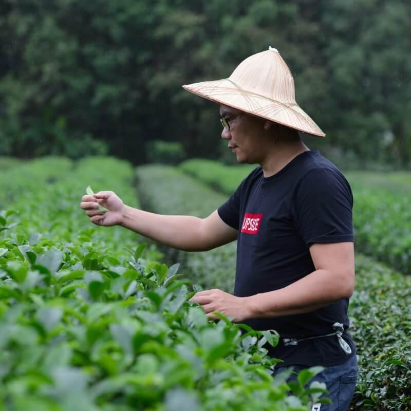 用好茶說宜蘭的故事 - 正福茶園第四代游正福