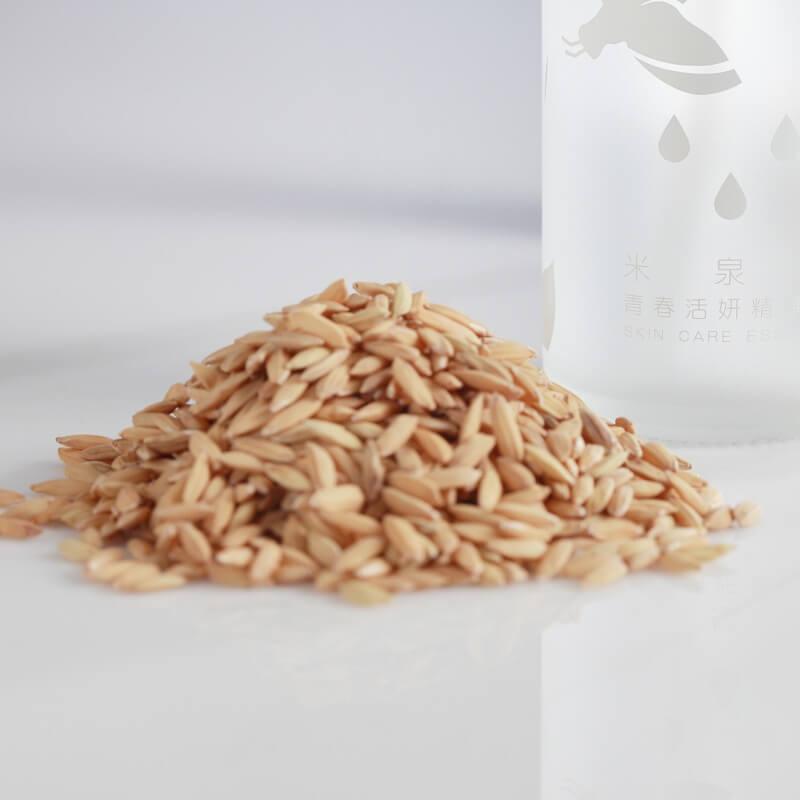填飽肚子更滋養肌膚的台灣好米