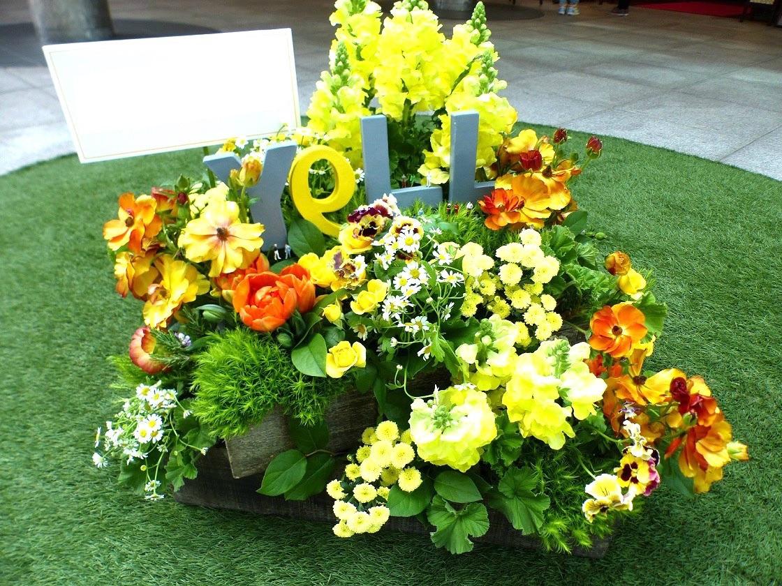 ロゴモチーフの心躍る祝い花|