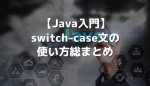 java switch case