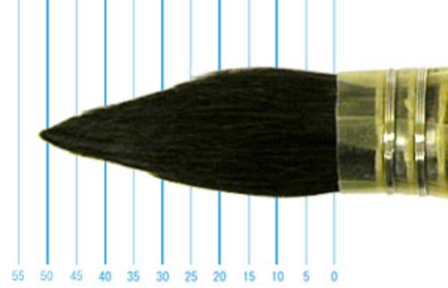 ラファエル水彩筆 803(ラウンド羽管・ブルーリス)12号