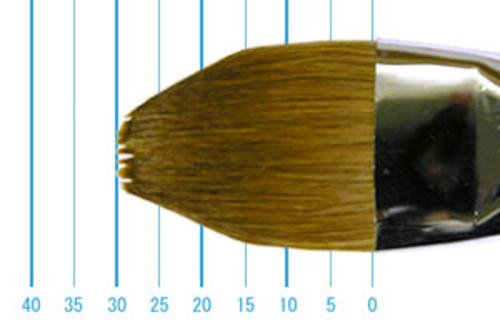 ラファエル油彩筆 8722(フィルバート・赤テン)22号