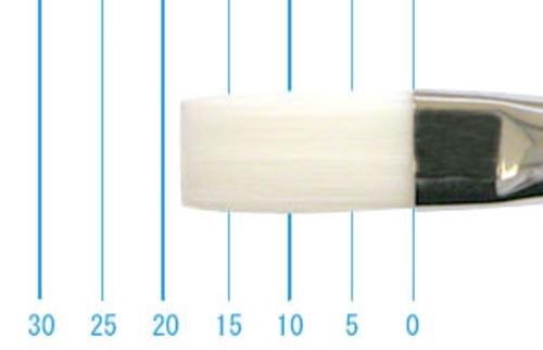 世界堂油彩筆 N666(フラット・白ナイロン)10号