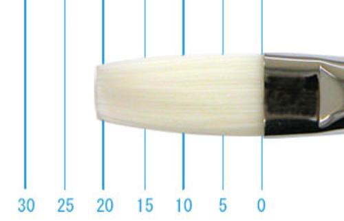 世界堂油彩筆 N666(フラット・白ナイロン)12号