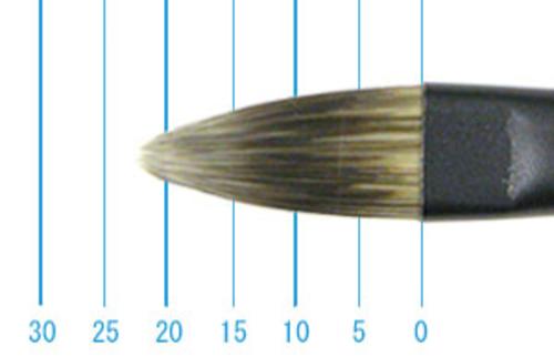 丸善 インターロン 1214 長軸(フィルバート)12号
