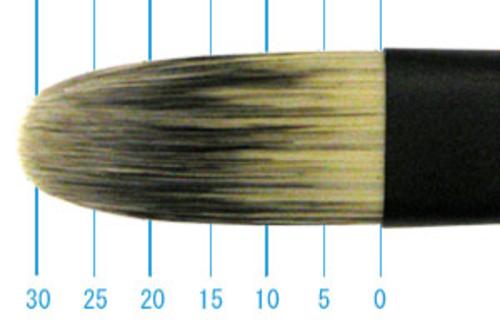 丸善 インターロン 1214 長軸(フィルバート)20号