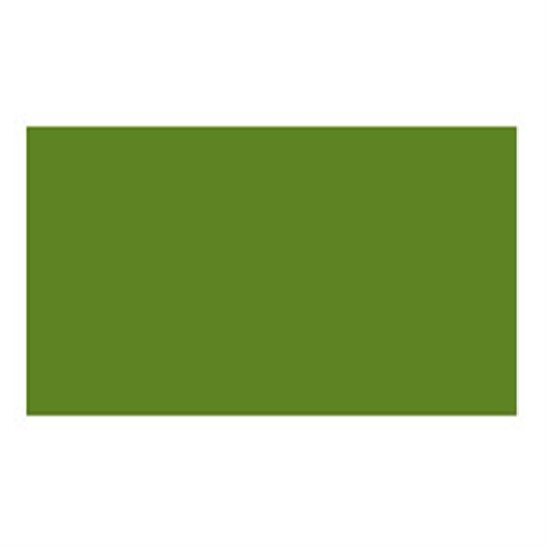 ホルベイン アクリラガッシュ40ml アッシュグリーン(D857)