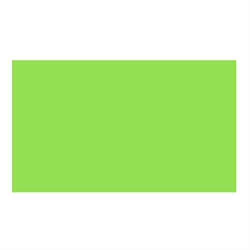 ターナー イベントカラー550mlパック 黄緑