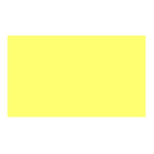 ターナー ネオカラー水性ブライト100ml瓶[レモン]