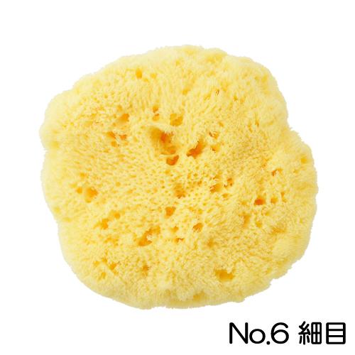 ホルベイン 天然海綿 No.6(細目)