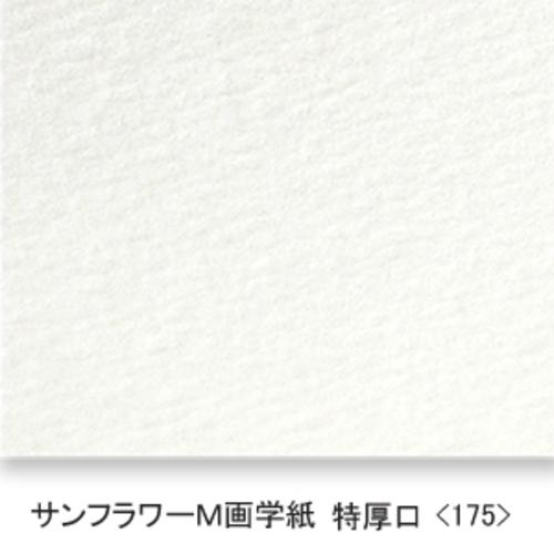 サンフラワーM画学紙(特厚口・175K)B本判半切:10枚