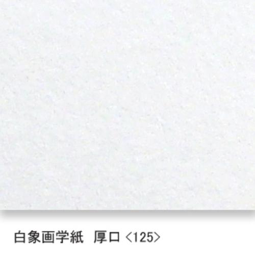 白象画学紙(厚口・125K)B本判半切:10枚