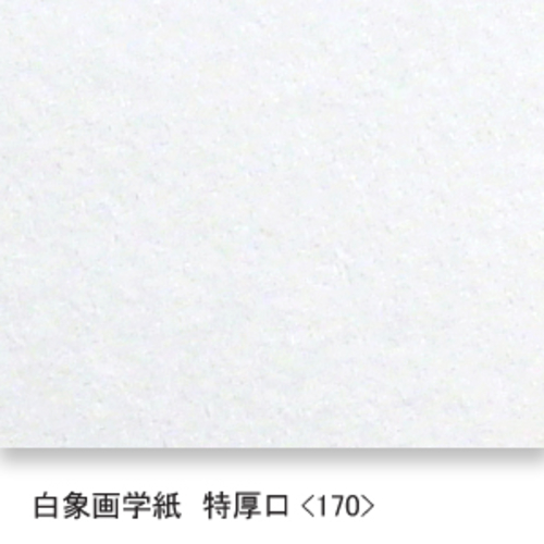 白象画学紙(特厚口・170K)B本判:5枚
