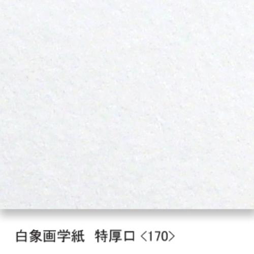 白象画学紙(特厚口・170K)B本判半切:10枚
