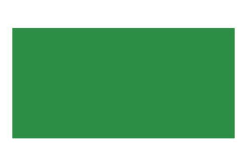 ステッドラー カラトアクェレル水彩色鉛筆 52サップグリーン