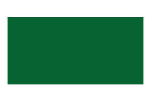 ステッドラー エルゴソフト色鉛筆  5グリーン