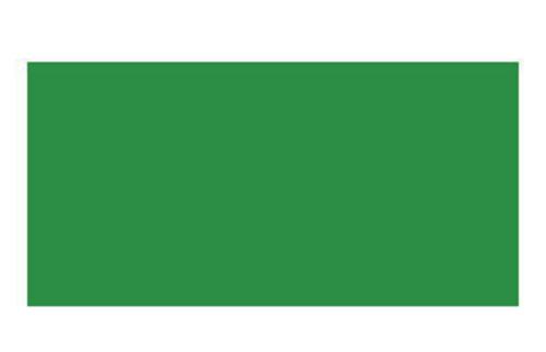 ステッドラー エルゴソフト色鉛筆 52サップグリーン