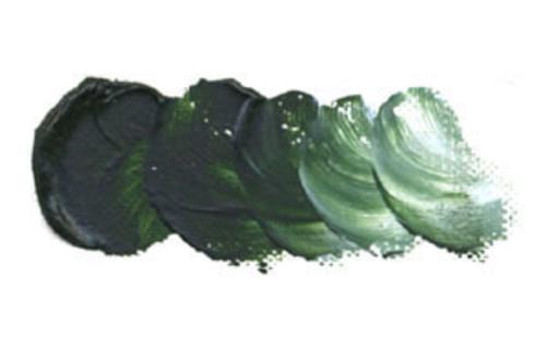 ホルベイン 油絵具6号(20ml) H075 テールベルト