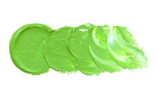 ホルベイン 油絵具6号(20ml) H077 パーマネントグリーンライト