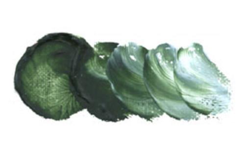 ホルベイン 油絵具9号(40ml) H276 サップグリーン