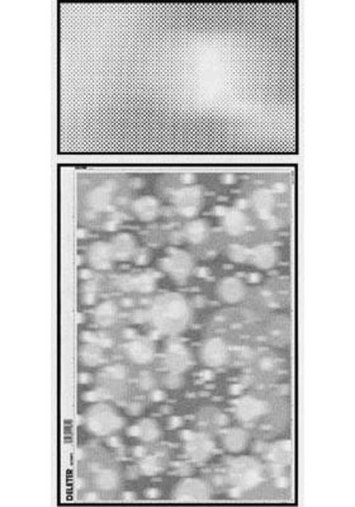 デリーター スクリーン SE-500