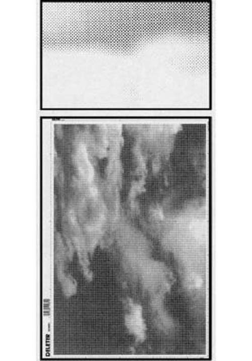 デリーター スクリーン SE-566