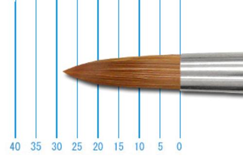 ホルベイン パラリセーブル250R(ラウンド)14号