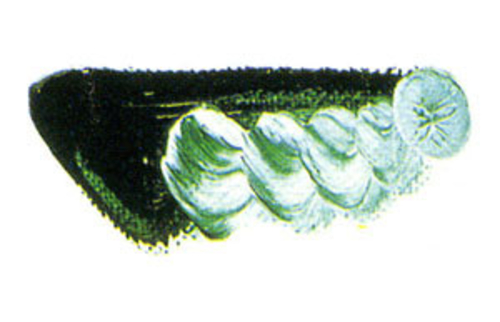 マツダ 専門家用油絵具6号(20ml) 25 ビリジャン