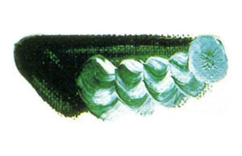 マツダ 専門家用油絵具6号(20ml) 26 ビリジャンチント
