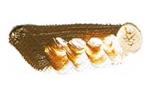 マツダ 専門家用油絵具6号(20ml) 112 ブラウンオーカー
