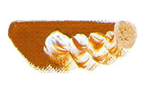 マツダ 専門家用油絵具6号(20ml) 99 ローズグレー