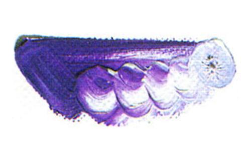 マツダ 専門家用油絵具6号(20ml) 165 コバルトバイオレット