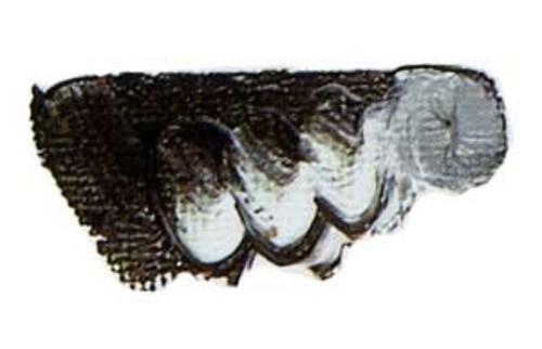 マツダ クイックNo.1油絵具20号(110ml) 022 テールベルト