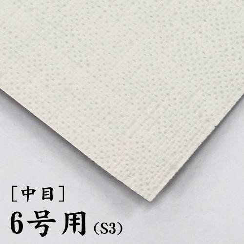 画布【中目】(F・P・M兼用) 6号