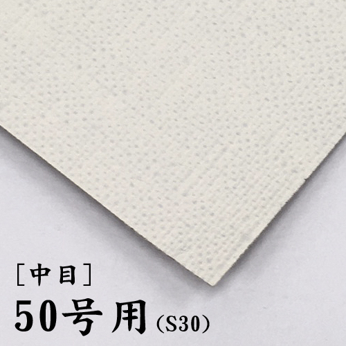 画布【中目】(F・P・M兼用) 50号