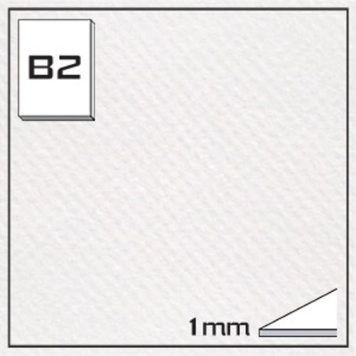 ミューズ キャンソンボード(#335)CAS-B2[10枚組]1mm厚