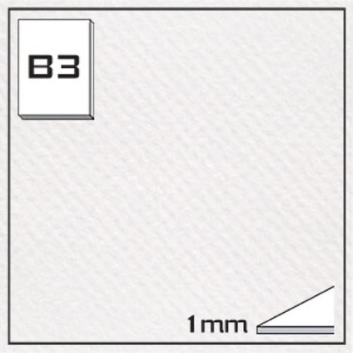 ミューズ キャンソンボード(#335)CAS-B3[10枚組]1mm厚