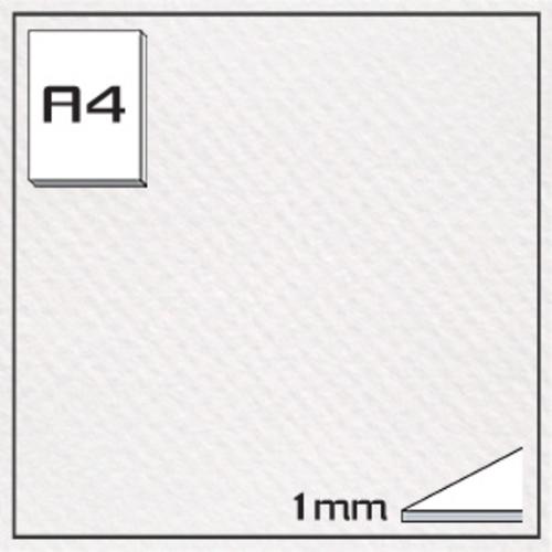 ミューズ キャンソンボード(#335)CAS-A4[10枚組]1mm厚