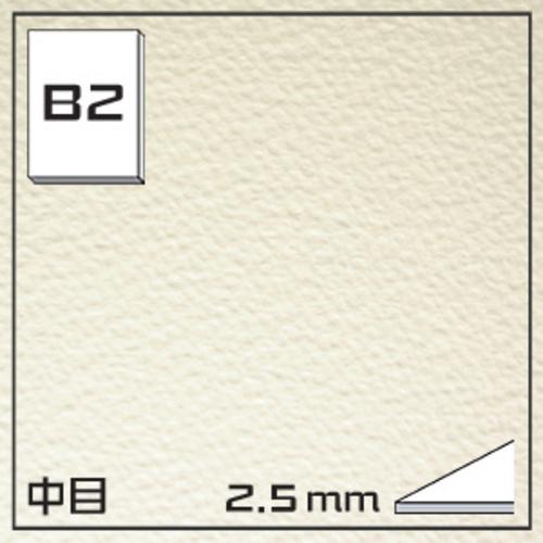 オリオン ワーグマンボード(中目)GB-B2[5枚組]2.5mm厚