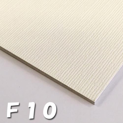 オリオン キャンバスボードSX F10