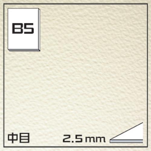 オリオン ワーグマンボード(中目)GB-B5[10枚組]2.5mm厚