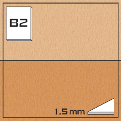オリオン タントボード FK219-B2[10枚組]1.5mm厚